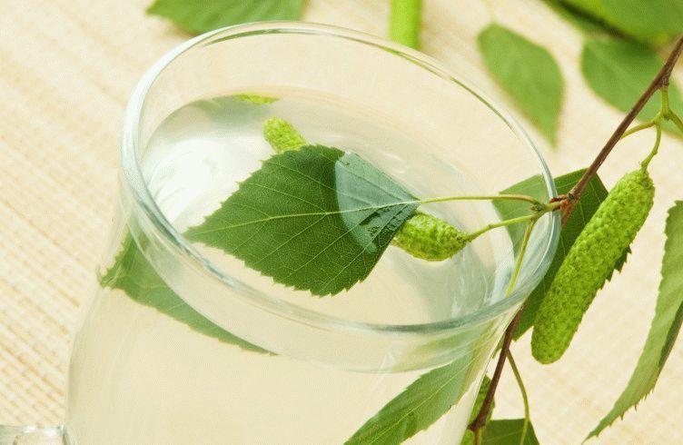 glass-fresh-birch-sap