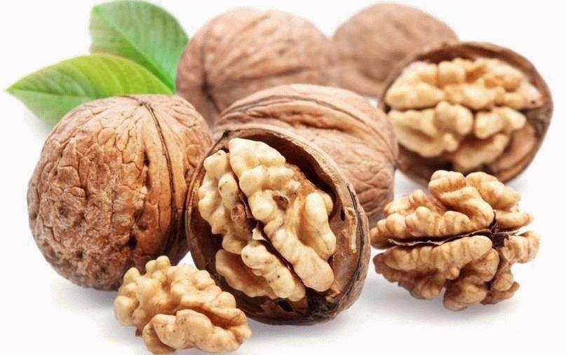 Вред и польза грецких орехов