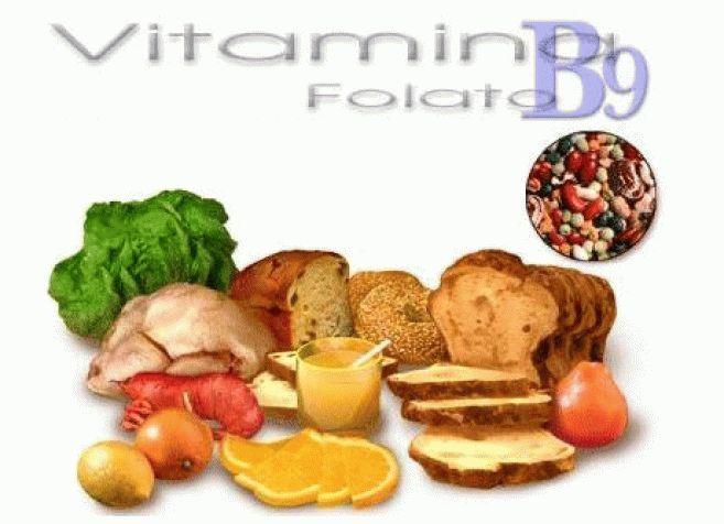 витамин в 9 фолиевая кислота