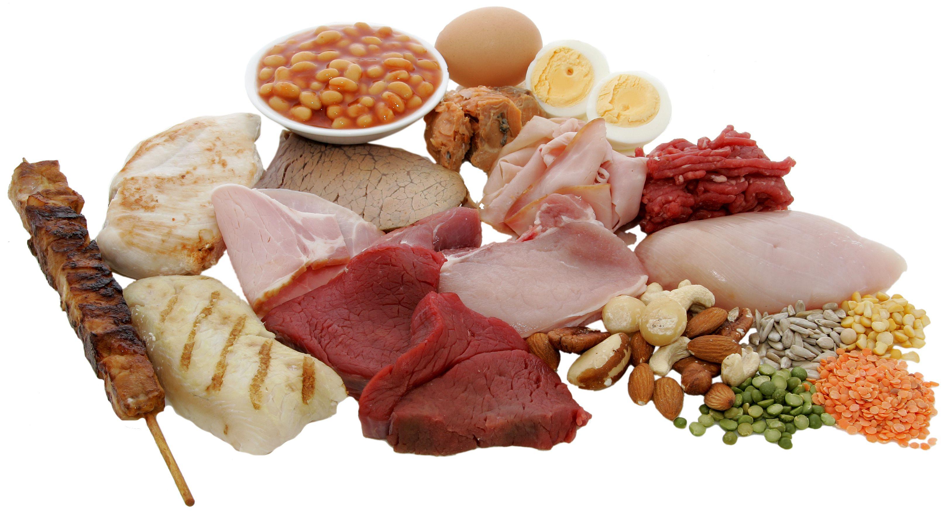 Вред и польза белки