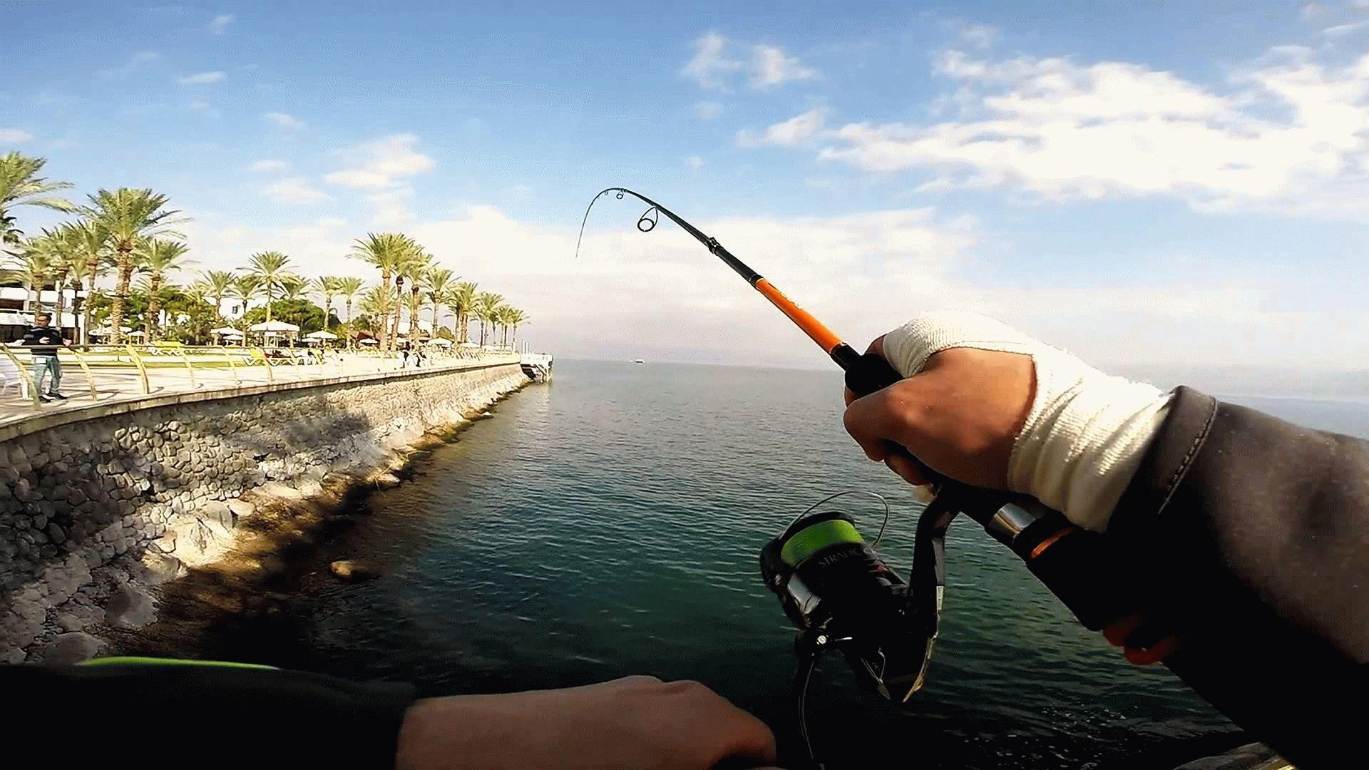 спиннинг для ловли с берега на море купить