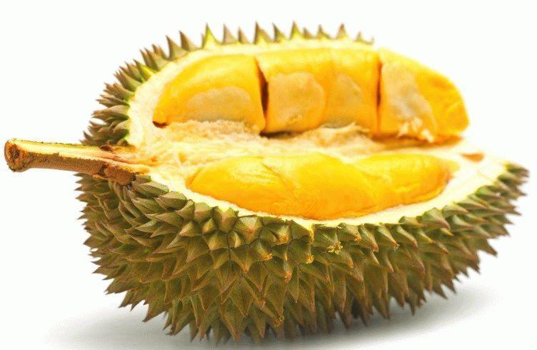 фрукт фото дуриан