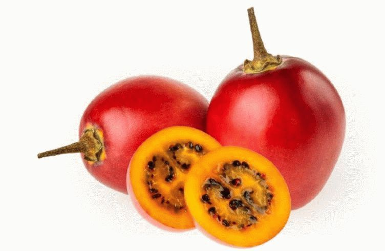 """Email sent from: """"Bain, Jennifer""""  JBain@thestar.ca  Subject: Emailing: tamarillo courtesy Procolombia.jpg Date: 26 March, 2015 5:25:18 PM EDT For Cynthia David Fresh Bites column. Here's another tamarillo possibility, courtesy Procolombia"""