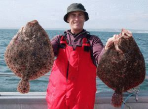 Fresh_Frozen_Halibut_WR_HOG_Turbot_Fish