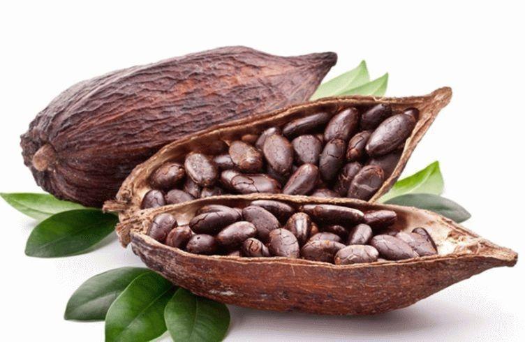 Цены на какао-сырье выросли на фоне повышеного спроса